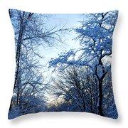 Winter Sunrise II Throw Pillow