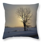Winter Sunset In Lambton County Throw Pillow