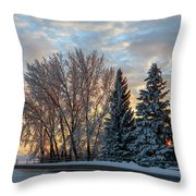 Winter Colors. Throw Pillow