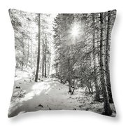 Winter Sunshine Forest Shades Of Gray Throw Pillow