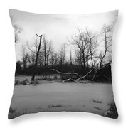 Winter Swamp Throw Pillow