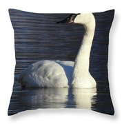 Winter Swan Throw Pillow