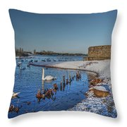 Winter Swan Lake Throw Pillow