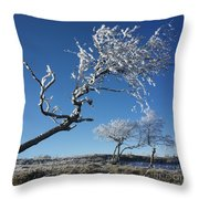 Winter Tree. Throw Pillow by Bernard Jaubert