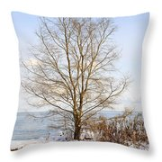 Winter Tree On Shore Throw Pillow