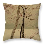 Winter Tree Over Bay Throw Pillow