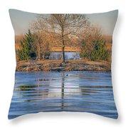 Winter Tree - Walnut Creek Lake Throw Pillow