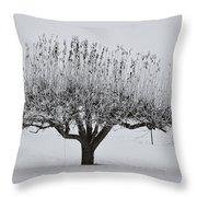 Winter Tree Throw Pillow