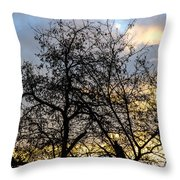Winter Trees At Sunset Throw Pillow