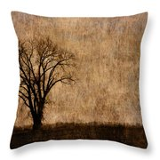 Winter Trees In The Bottomland 1 Throw Pillow