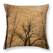 Winter Trees In The Bottomlands 2 Throw Pillow