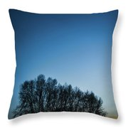 Winter Trees On The Background Of The Night Sky Throw Pillow
