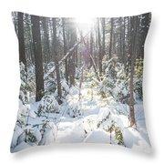 Winter Under The Sun Throw Pillow