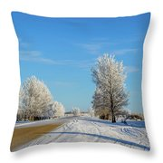 Winter In Saskatchewan Throw Pillow