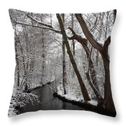 Winter Walk In The Woods Throw Pillow