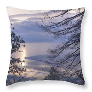 Winter Waterscape Throw Pillow