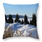 Winter Waves Throw Pillow