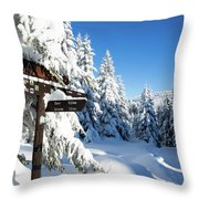 winter way in the Upper Harz Throw Pillow