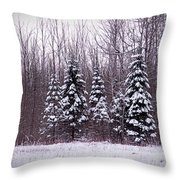 Winter White Magic Throw Pillow