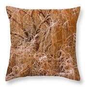 Winter Willow Branches Throw Pillow