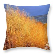 Winter Willows Throw Pillow