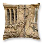 Winter Windows. Throw Pillow