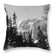 Winter Wonders 3 Throw Pillow