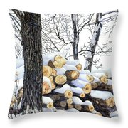 Winter Wood Throw Pillow