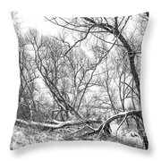 Winter Woods On A Stormy Day 2 Bw Throw Pillow