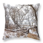 Winter Woods On A Stormy Day 2 Throw Pillow