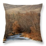 Winter Yakima River With Hills And Orchard Throw Pillow