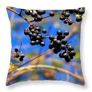 Winterberries II Throw Pillow