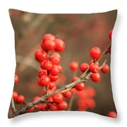 Winterberries On Brown Throw Pillow