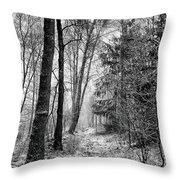 Winteress Throw Pillow