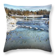 Wintering Geese Throw Pillow