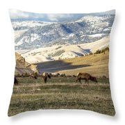 Wintering Grounds Throw Pillow