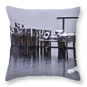 Winterized Throw Pillow