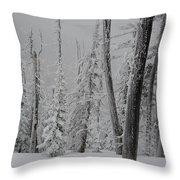 Winterland Throw Pillow