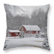 Winter's Beauty Throw Pillow