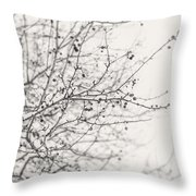 Winter's Berries In Black And White Throw Pillow