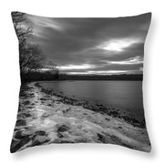 Winter's Bite Throw Pillow