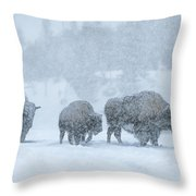 Winter's Burden Throw Pillow by Sandra Bronstein