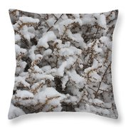 Winter's Contrast Throw Pillow