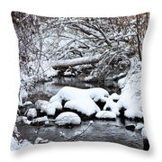 Winters Crossing Throw Pillow