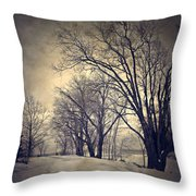 Winter's Dark Thoughts Throw Pillow