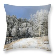 Winters Day In The Mountains Throw Pillow