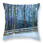 Winters Day - Pisgah Forest Nc Throw Pillow