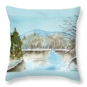 Winter's Daylight Chill  Throw Pillow