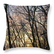 Winter's Delight Throw Pillow