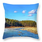 Winter's Demise Throw Pillow